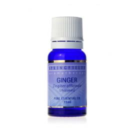 Ginger 11ml